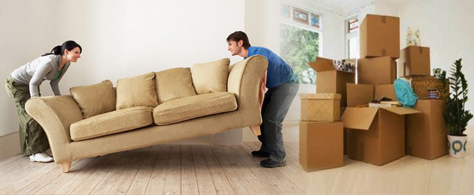 Glebe movers and packers